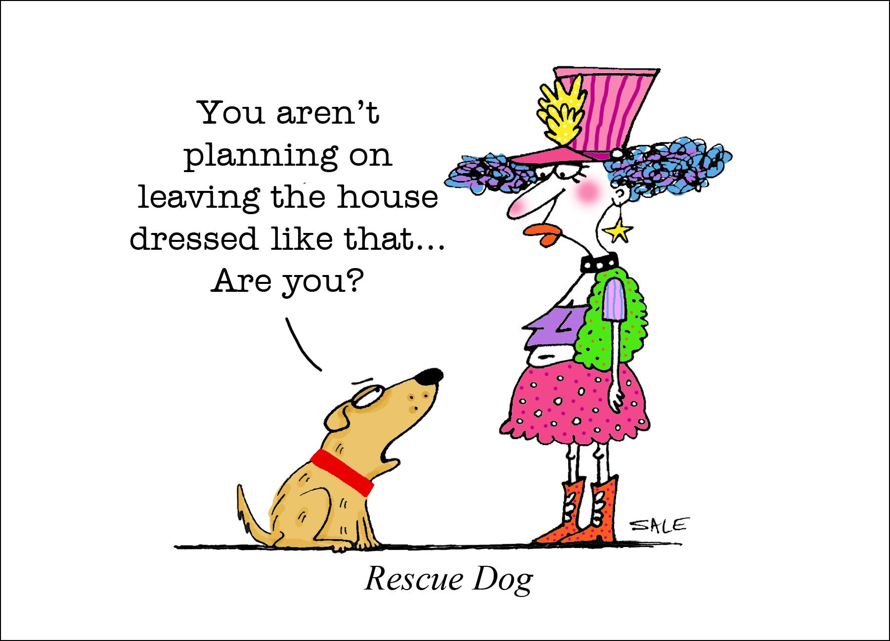 Rescue Dog Graham Sale